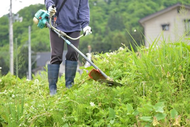鈴鹿市で草刈りに最適な年3回の時期~楽に草刈りを終えるコツまで徹底解説